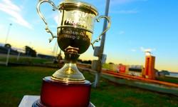 Dee Bee, Dinero shine in Horsham Cup heats