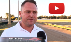 Horsham Greyhound Racing Club track redevelopment