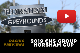 2019 CHS Group Horsham Cup Preview