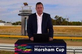 HORSHAM CUP PREVIEW